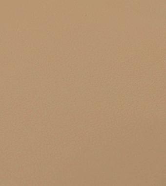 Camel Vinyl